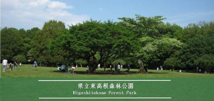 車場 駐 高根 東 公園 森林