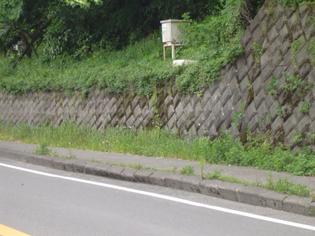 写真:歩道(縁石)の押出し状況