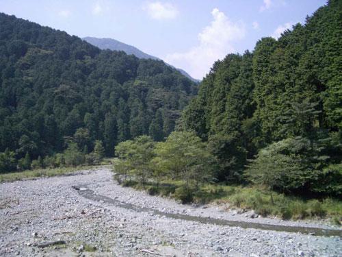やどりき水源林写真