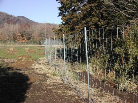 写真:畑の周囲に設置された獣害防護柵