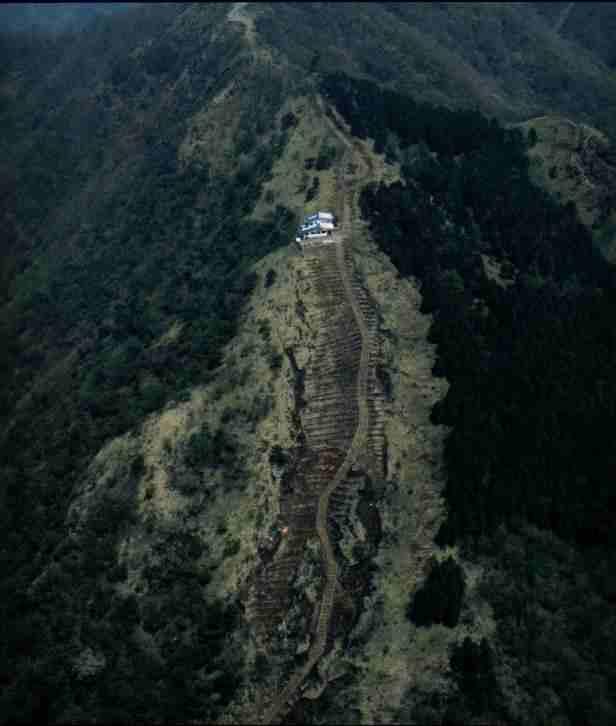 写真:登山道の周辺が裸地化して茶色に見える航空写真