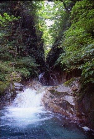 写真:沢を流れる水