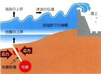 イラスト:津波とは? なぎさ整備グループ 津波とは?高潮とは? - 神奈川県ホームページ こ
