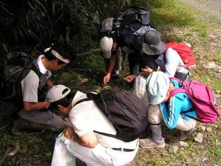 写真:種子を拾う参加者