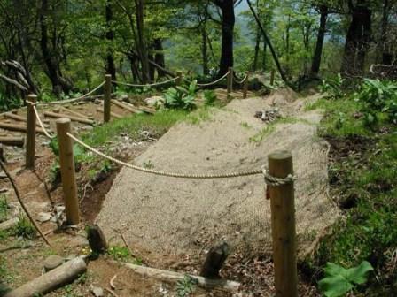 写真:登山道沿いに設置されたロープ柵工