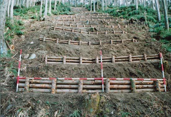 写真:現地採取の間伐材を使った丸太筋工
