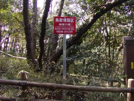写真:鳥獣保護区に立てられた看板