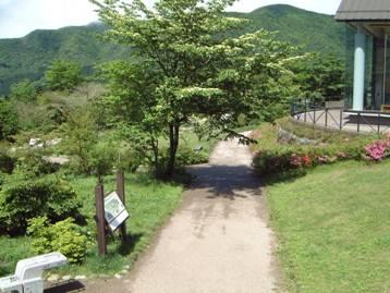 自然学習歩道の一部、花と昆虫の広場の写真